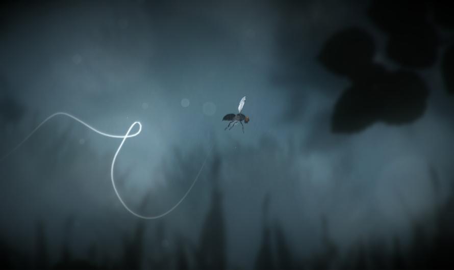 «The Plan» – En flues reise eller er det noe mer?